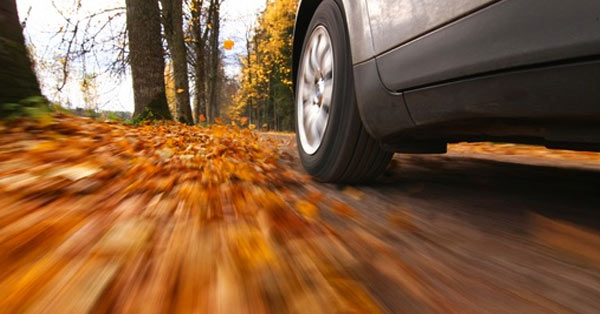 fall_car_care